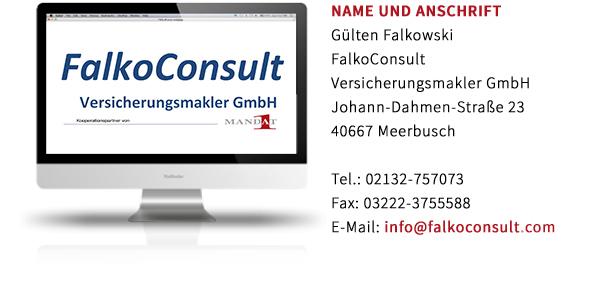FalkoConsult-Erstinformation